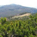 planina rzenik