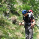 planinec s kuštravim palčkom