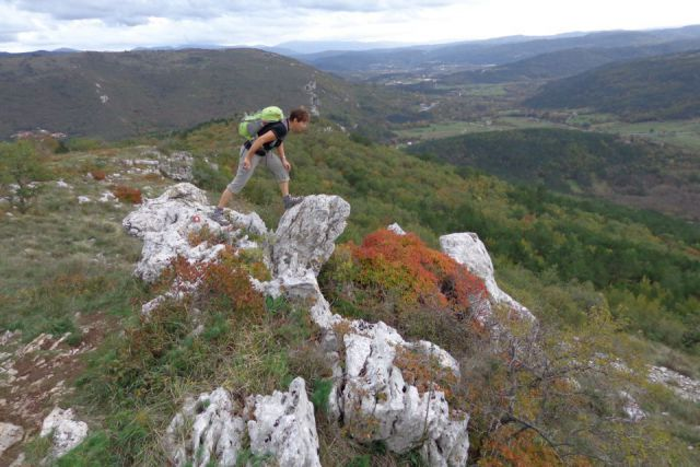 Osp + Kraški rob  -  03.11.12 - foto