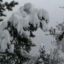 teža snega je kar velika