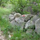 obisk belovih sten
