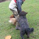 ... se je vnel strašen pasji boj