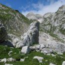 prečenje alpskega skalnjaka ...