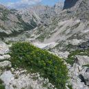 rožni koren in veljska dolina