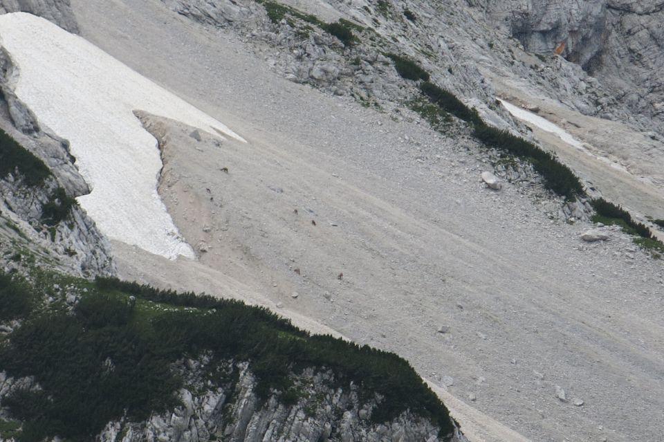 Ledine + Ledinski vrh  04.08.2016 - foto povečava