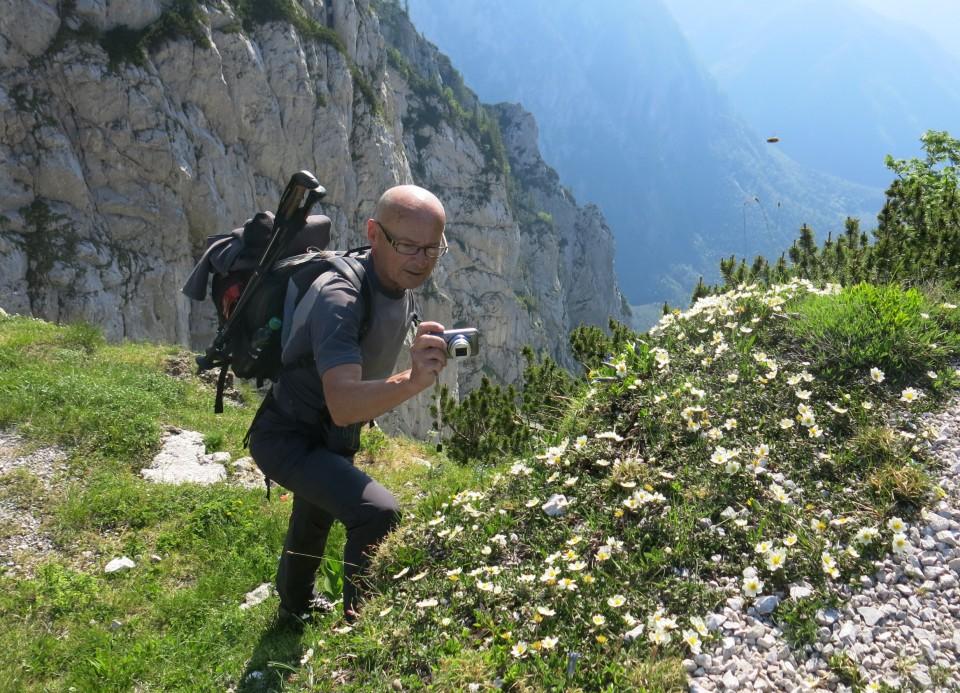 Kalška gora   21.06.2019 - foto povečava
