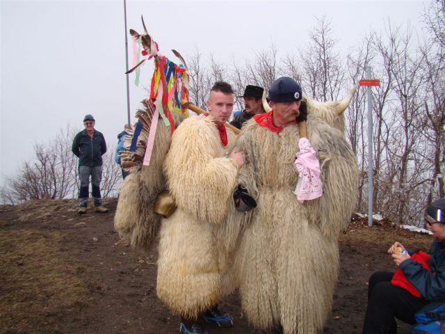 Bejži zima,korant gre! 20.02.2011 - foto