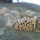 mrzlo bo,drva se zbirajo