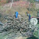 kaki kup drv je to