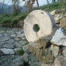 kar nekaj zrnja je šlo pod ta kamen