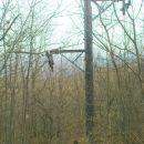 rad bi vido kakšni so smučarji,ko jih ta vlečnica privleče na vrh? :-)))