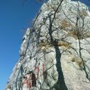 prava stena za plezarijo