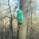 hand granate visijo po drevju