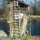 skakalnica na divjem kopališču ob Dravi