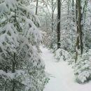 kaj je tu snega