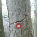 tu je pa cvililo,saj je lahko,kajti drevo je počlo!