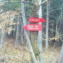 zdaj greva po markirani poti v dolino