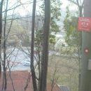 v gozdu nad Hermanom v Dolanah