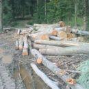 to ni mišleno za drva,ampak za zobotrebce:-))