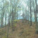 glavni vrh Ravne gore 694m
