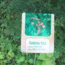 naštel sem 30 opisov rastlin,ki rastejo tu