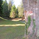 pod dvorcem se začne pot proti Strahinjčici in št.16 in 17
