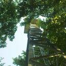 vrh z razglednim stolpom