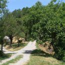 tu je Gabrčeva domačija,po kateri se imenuje Brezova gora