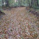 jesen se bliža