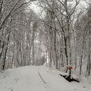 spet nova pošiljka snega