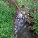 potoki so čisti