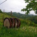 vinski bivak v Gruškovcu