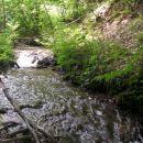 višje prihajamo,bolj potok šumi
