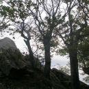 vzhodni vrh