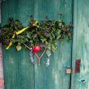 vrata v vinski hram prijatelja Žigice