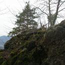 vrh,zadej gor se vidi Ajdovo zrno,vzhodni del Strahinjčice