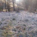 zjutraj je blo mrzlo kak pes
