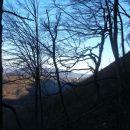 skozi veje se  vidi Ravna gora