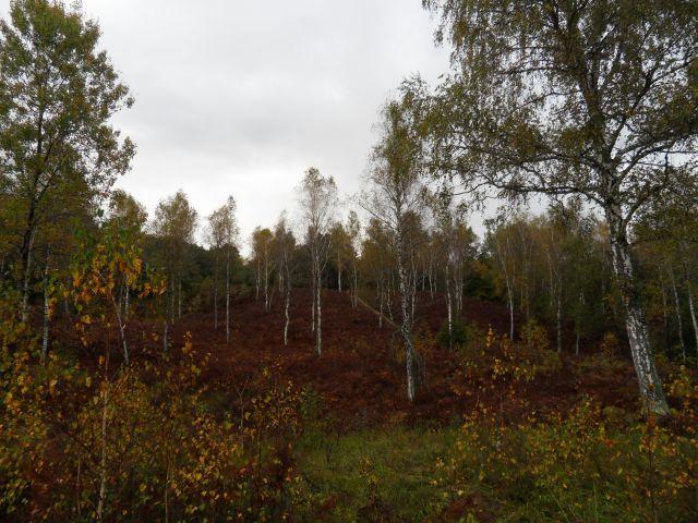 16. 10. 2012 - foto