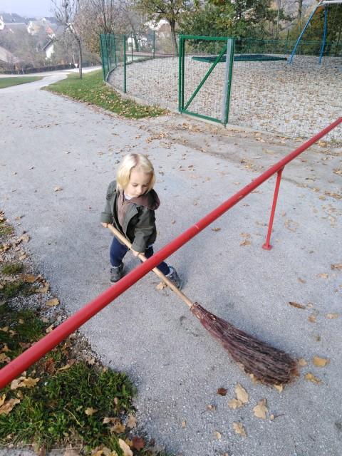 Jesen - Hobotnice - foto