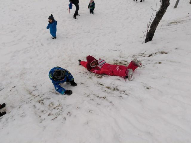 Zima - Hobotnice - foto