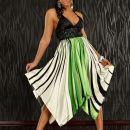 15: Lahkotna oblekica