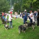 Predstavitev Kraševcev v Črni na Koroškem