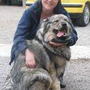 9.4.2006  V eni prelepih kraških vasic smo obiskali kraševca Rona
