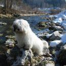 Atos me je prehitel, vedno mi uide čez reko!