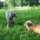 Tilly z Rossijem