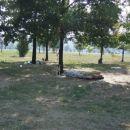 Bukarešta - park blizu parlamenta, dom za brezdomca