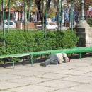 Utrujeni prebivalec parka