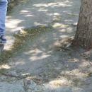 Chisinau - slabe ceste