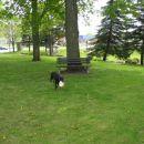 Dasha in njen frisbee